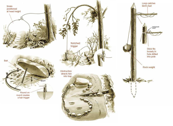 Various traps and snares