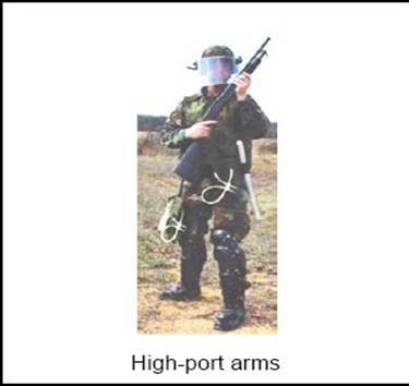 High-port arms carrying position